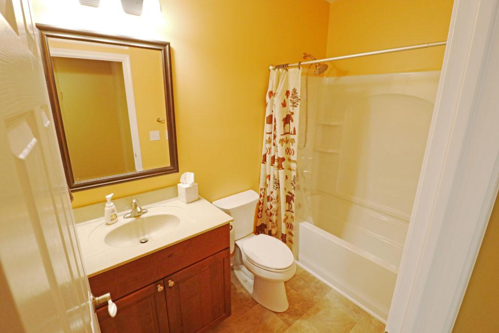 Eagle Basement Bathroom